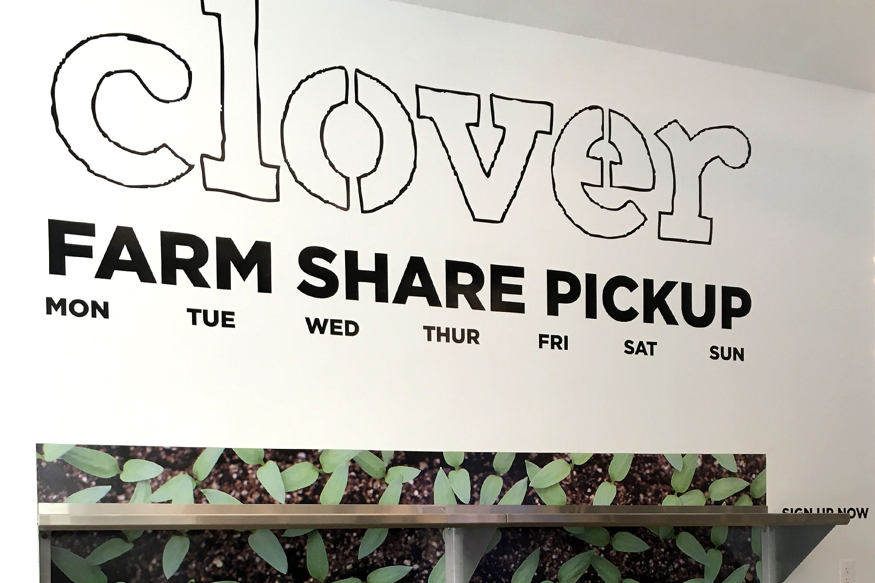 clover food lab obsessed with veggies creativity and quality