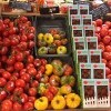 Specialty Tomatoes Now Available in ALL Hannaford Stores!