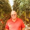 Backyard Farms Names Tony Croft Stevens Head Grower