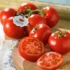 Specialty Tomatoes | Summer is Back For a Limited Time at Hannaford!