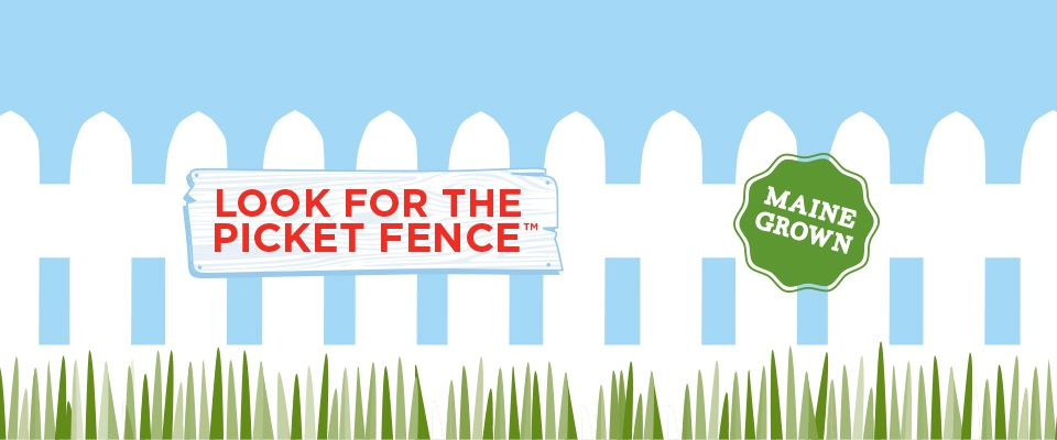 Look for the picket fence